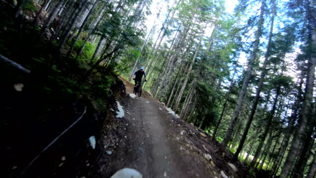 mountain bikers race down forest track - solo uomini giovani video stock e b–roll