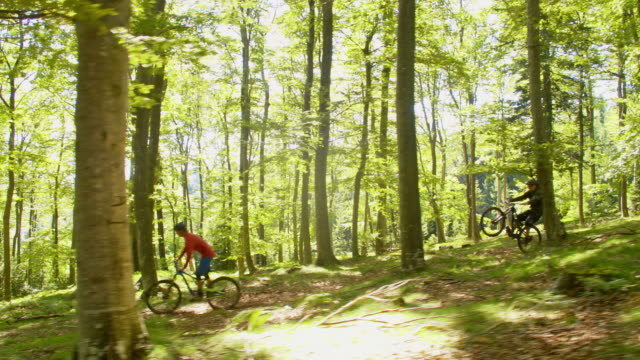 WS Mountain bikers riding downhill in forest
