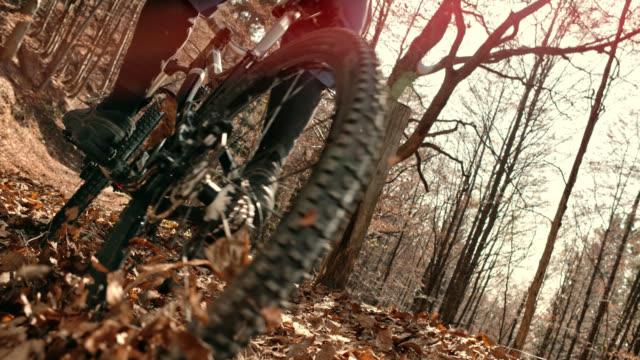 葉に覆われて森林歩道に乗って slo mo マウンテン バイク - 砂利点の映像素材/bロール