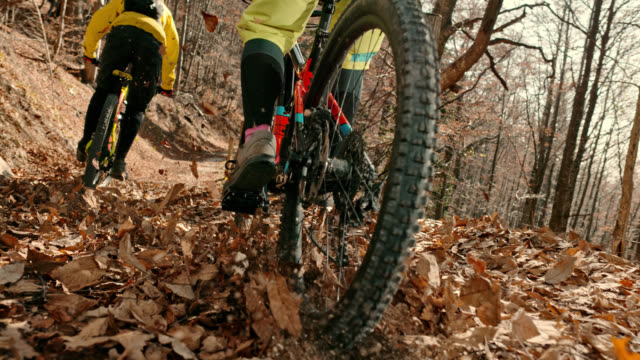 speed ramp mountain bikers riding on leaf covered forest trail in sunshine - mountain bike video stock e b–roll