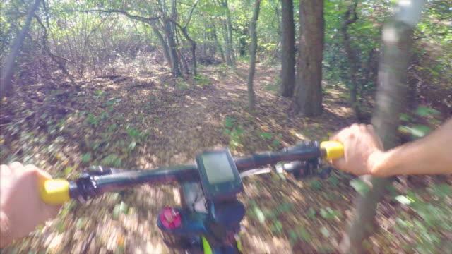 POV Mountain biking in a beautiful sunny day.