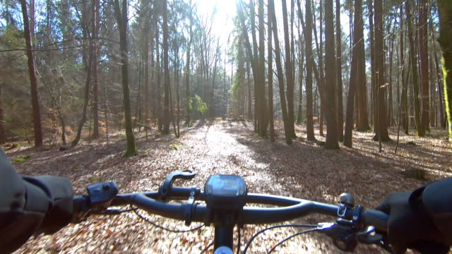 mountain biking in sunny winter forest - cold temperature stock videos & royalty-free footage