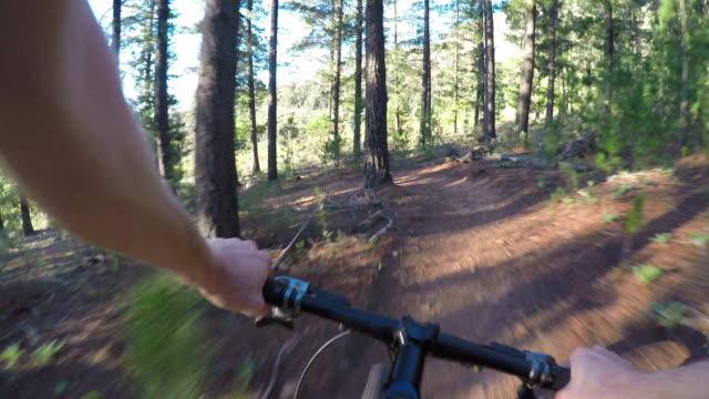 vídeos y material grabado en eventos de stock de ciclismo de montaña en el bosque es genial - manillar