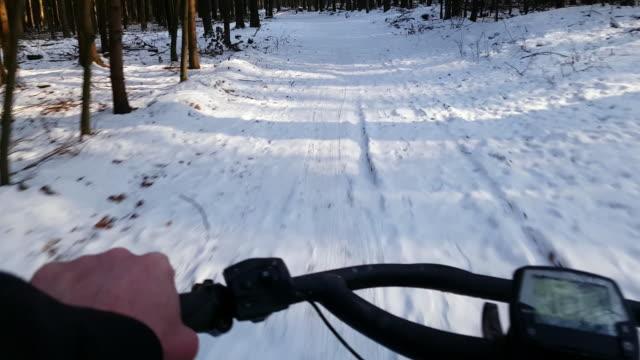 VTT en forêt d'hiver