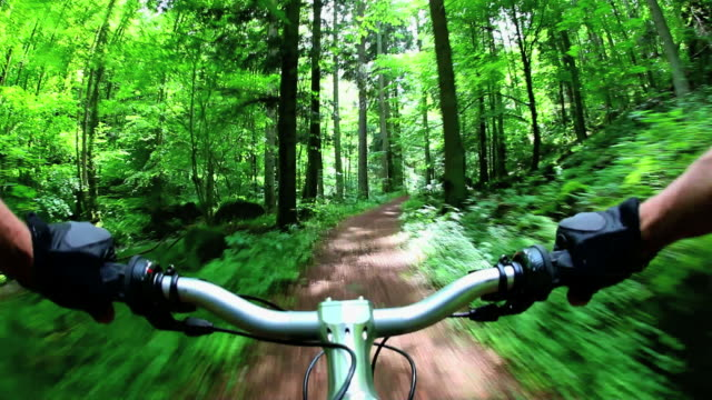 pov mountain biking through green forest real cam shot - mountain biking stock videos and b-roll footage