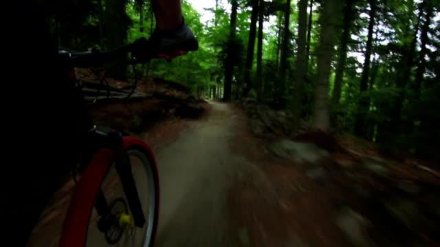 Mountain Biking Through Green Forest TL POV
