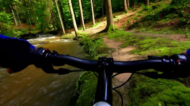 vídeos y material grabado en eventos de stock de ciclismo de montaña en el bosque verde punto de vista - manillar