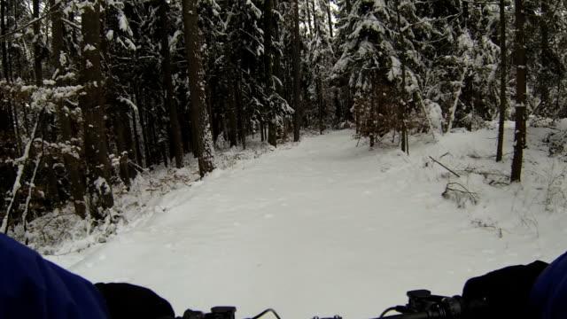 マウンテンバイクからユキコ森の pov - クロスカントリーサイクリング点の映像素材/bロール