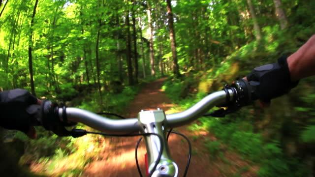 HD Mountain Biking Through Spring Forest