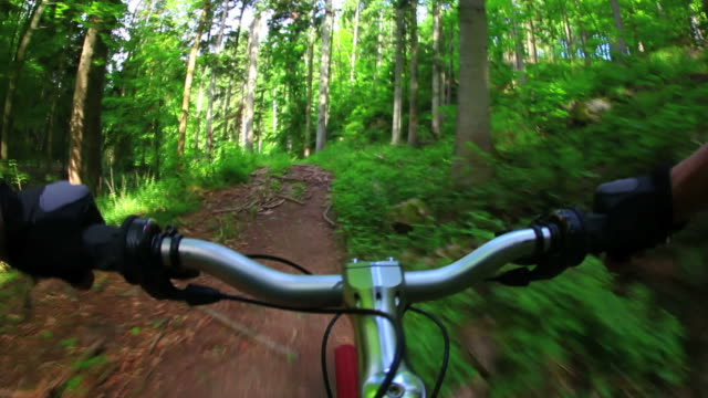 pov mountain biking through spring forest - mountain biking stock videos & royalty-free footage