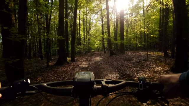 mountainbike-touren durch sonnige frühlingswald - mountainbike stock-videos und b-roll-filmmaterial