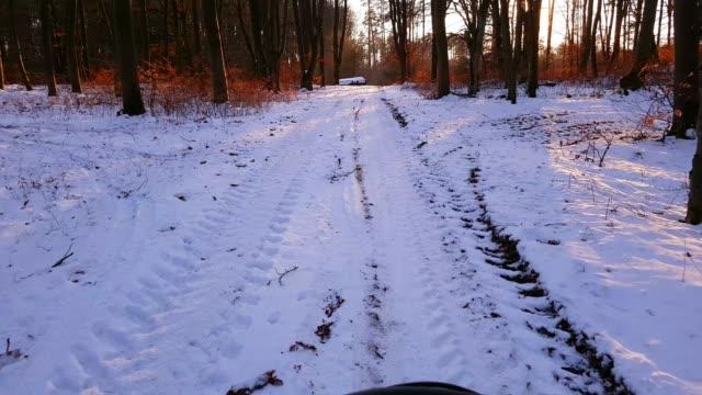 Mountain Biking Through Sunny Winter Forest