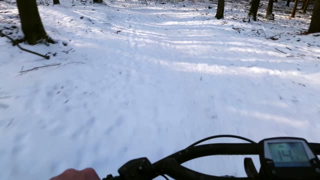 VTT à travers forêt d'hiver ensoleillé