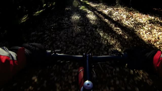 マウンテンバイク冬の森 - クロスカントリーサイクリング点の映像素材/bロール