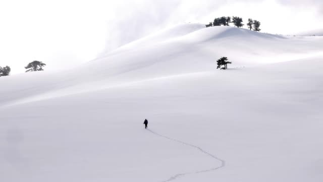 mountain climber is hiking in forest in winter - snowcapped mountain stock videos and b-roll footage