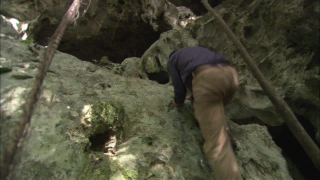 A mountain climber scales the walls of a cliff and enters a cave in Belize.