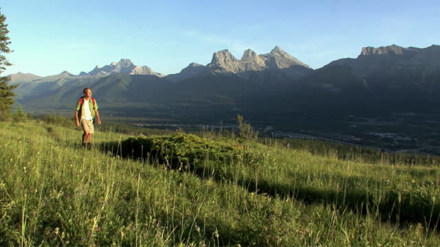 WS, PAN, mountain climber walking across mountain meadow and looking at view, Canmore, Alberta, Canada