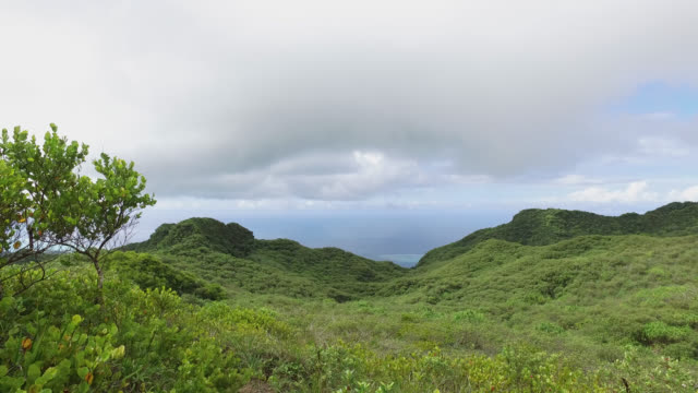 mountain covered with vegetation and sea view - isola di tahaa video stock e b–roll