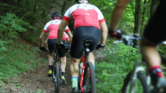 vídeos de stock e filmes b-roll de mountain cycling through forest - enfeites para a cabeça