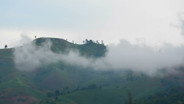 mountain Nebel