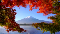 Mountain fuji with red maple in Autumn, Kawaguchiko Lake, Japan