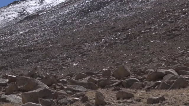 mountain in ladakh region, india - high up stock videos & royalty-free footage