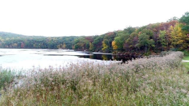 mountain lake in autumn, rising above reeds - orange new jersey stock videos & royalty-free footage