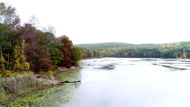 mountain lake in autumn - orange new jersey stock videos & royalty-free footage