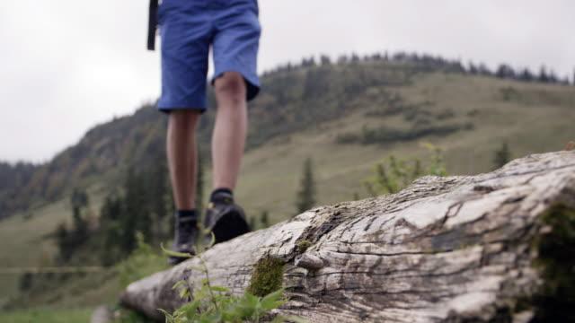 mountain landscape, boy walking on log, medium shot