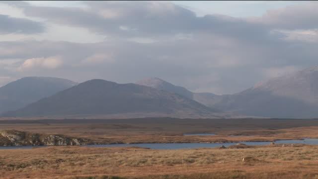 ws, mountain landscape, connemara, galway county, ireland - 荒野点の映像素材/bロール