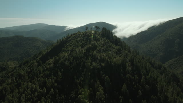 Mountain landscape in the Six Rivers National Forest, California.