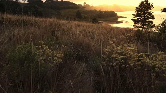 vídeos de stock, filmes e b-roll de paisagem da montanha sob o vento - o anoitecer