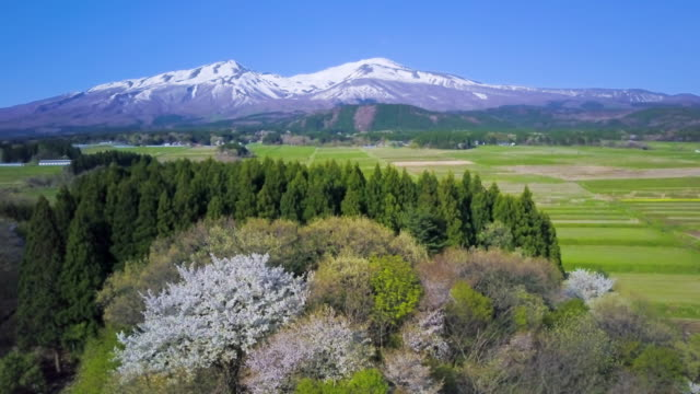 ws mountain, mount chokai, sakata city, yamagata prefecture, japan - 鳥海山点の映像素材/bロール