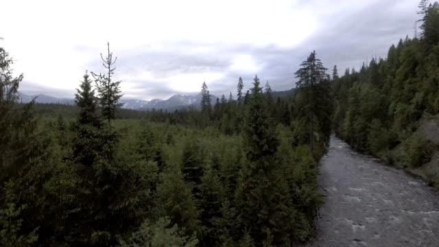 Mountain panorama. Aerial view