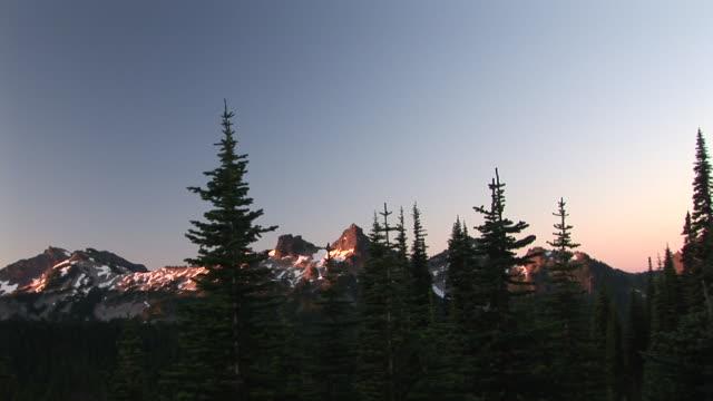 ws, zi, mountain peak seen through trees, mount rainier national park, washington, usa - mt rainier national park stock videos & royalty-free footage