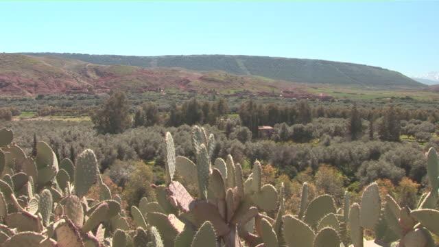 vidéos et rushes de ms pan mountain range with green valley / near marrakech, marrakech, morocco  - mountain range