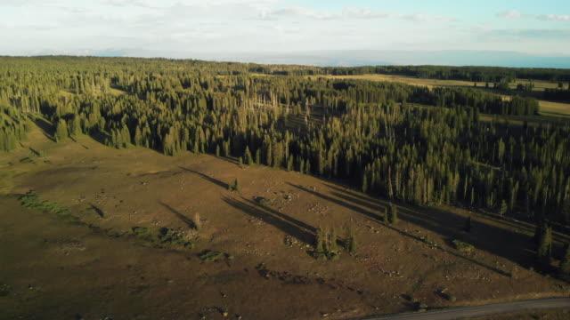 vidéos et rushes de mountain reservoir c vierge lake grand mesa national forest late evening sunset 4k série vidéo - conifère