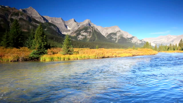 Mountain river in den Kanadischen Rockies