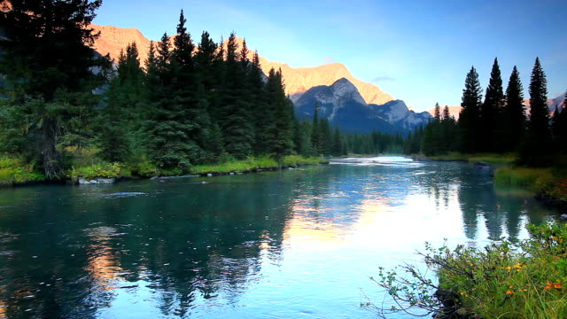 mountain river in the canadian rockies - lockdown viewpoint stock videos & royalty-free footage