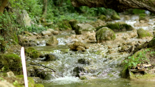 mountain river - named wilderness area stock videos & royalty-free footage
