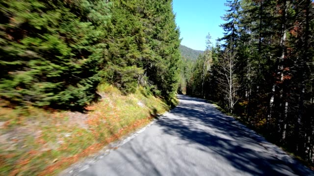 Mountain road in autumn, Vorderriss, Wallgau, Isarwinkel, Upper Bavaria, Bavaria, Germany, European Alps