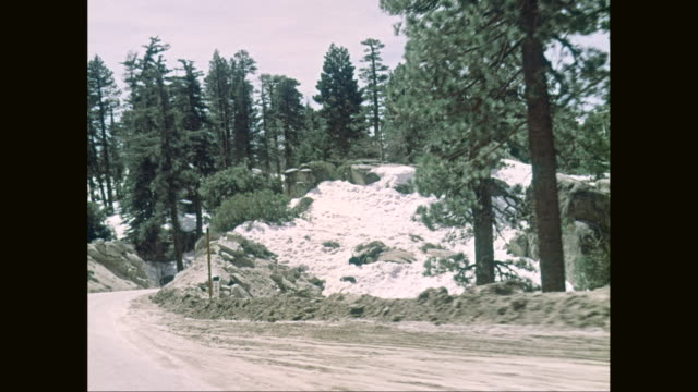 ws pov mountain road with forest area during winter / united states - country road stock videos & royalty-free footage