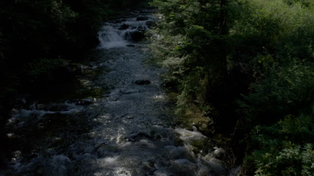 Mountain stream among rocks and tress. Aerial view