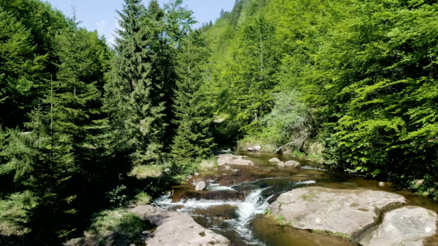 Mountain stream among rocks and tress - Drone point of view