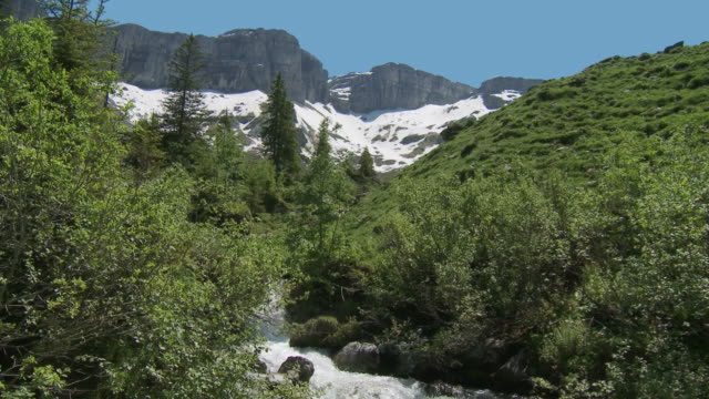 mountain stream, early summer, crane shot - crane shot stock videos and b-roll footage