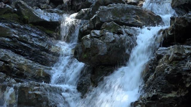 mountain stream, faltenbach near oberstdorf, allgau, swabia, bavarian alps, bavaria, germany, europe - bavarian alps点の映像素材/bロール