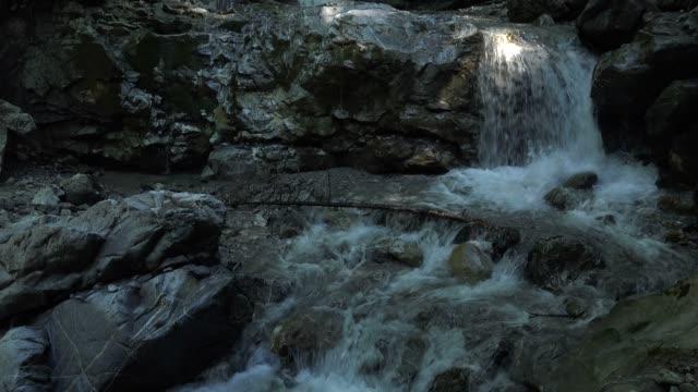 vídeos de stock, filmes e b-roll de mountain stream, faltenbach near oberstdorf, allgau, swabia, bavarian alps, bavaria, germany, europe - alta baviera