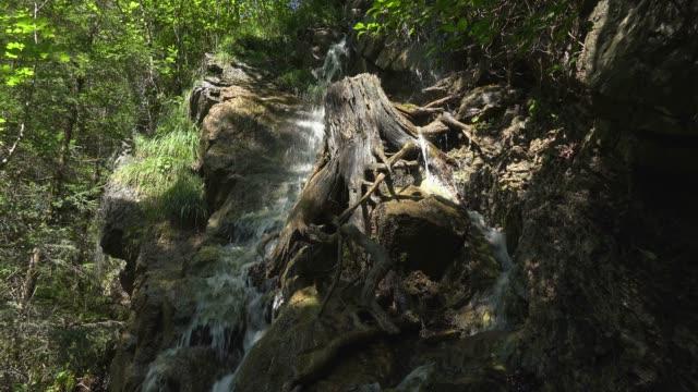 mountain stream faltenbach near oberstdorf, allgau, swabia, bavarian alps, bavaria, germany, europe - bavarian alps点の映像素材/bロール
