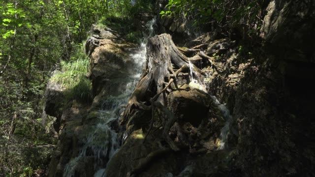 vídeos de stock, filmes e b-roll de mountain stream faltenbach near oberstdorf, allgau, swabia, bavarian alps, bavaria, germany, europe - alta baviera
