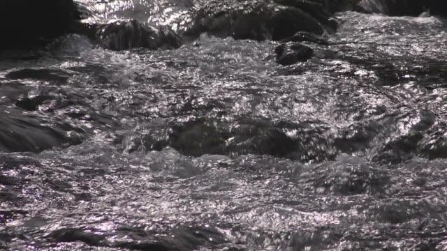 mountain stream, gifu, japan - 水の流れ点の映像素材/bロール